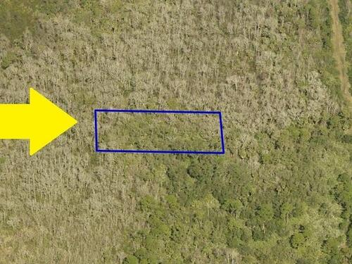 00000 No Access West From Puddleduck Lane, Malabar, FL 32950