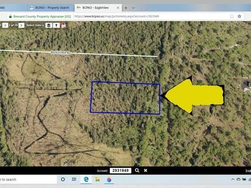 0000000 No Access 1 Lot Off Beekeeper, Grant Valkaria, FL 32950