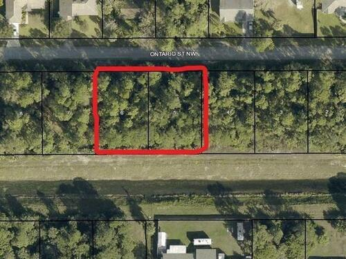 750&764 Ontario (2 Lots) Street NW, Palm Bay, FL 32907